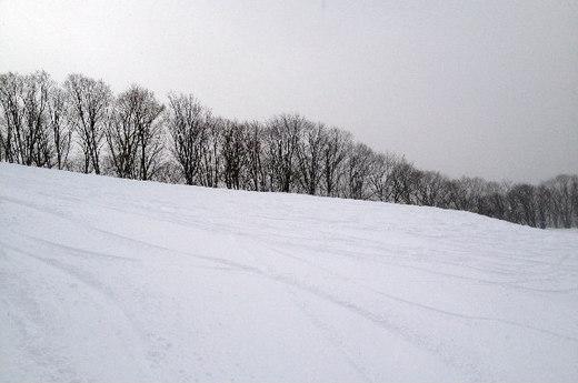 HOUDAIGI SKI AREA_8|2013.1.27_1.jpg