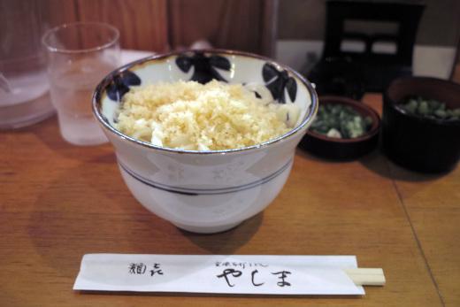 YASHIMA_2011.5.21_1.jpg